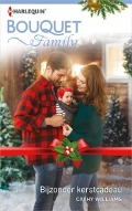 Bekijk details van Bijzonder kerstcadeau