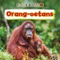 Bekijk details van Orang-oetans