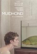 Bekijk details van Muidhond