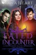 Bekijk details van Fated Encounter