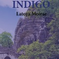 Bekijk details van Indigo