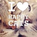 Bekijk details van I love Happy Cats