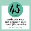 Bekijk details van 45 minuten meditatie voor het omgaan met moeilijke emoties