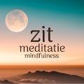 Bekijk details van Zit meditatie - Mindfulness