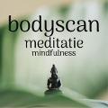 Bekijk details van Bodyscan meditatie - Mindfulness