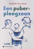 Bekijk details van Een puber-pleegzoon