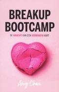 Bekijk details van Breakup bootcamp