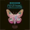 Bekijk details van Gap Year - Festival