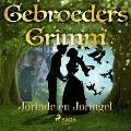 Bekijk details van Jorinde en Joringel