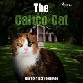 Bekijk details van The Calico Cat