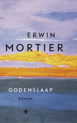 Bekijk details van Godenslaap; roman